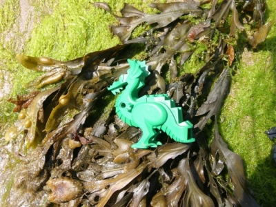 Puff the Lego dragon lives by the sea!